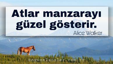 At ile ilgili Sözler